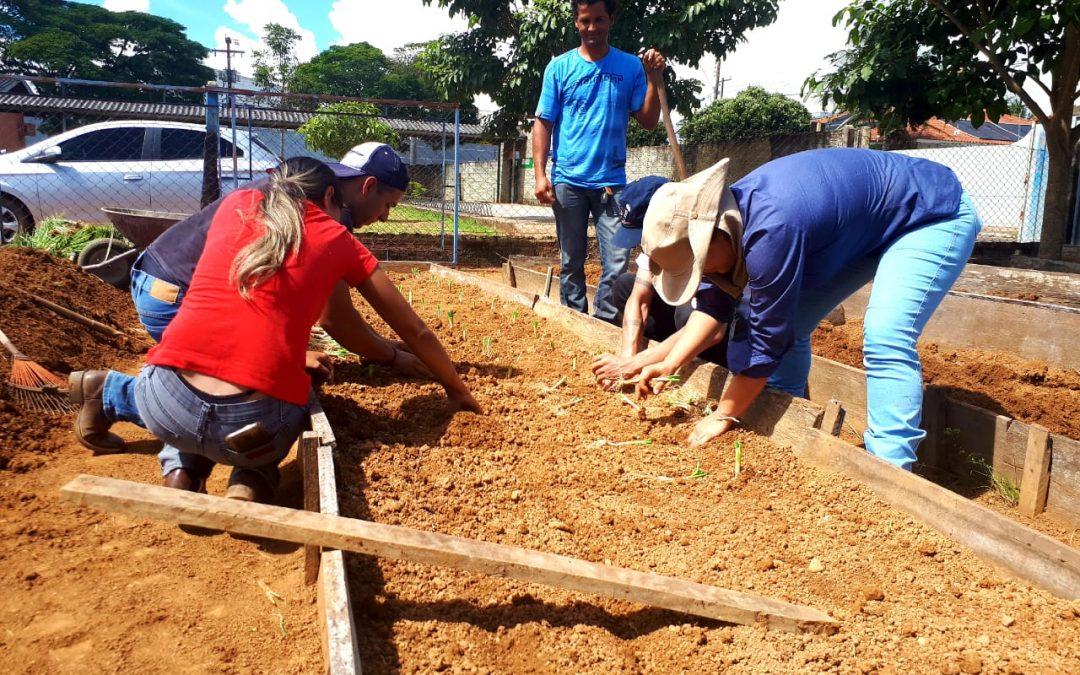 Alunos da Escola Paulo Freire aprendem horticultura na prática